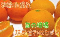 【2022年1月~発送】【農家直送】旬の濃厚柑橘詰め合わせセット(ご家庭用)3kg