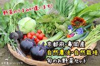 京都・亀岡産 自然農法・自然栽培で育てた体も心も喜ぶ、かたもとオーガニックファームの旬のお野菜セット