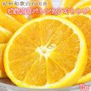 【ご家庭用訳あり】希少な国産バレンシアオレンジ7kg