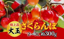 【令和3年 先行予約】極上品大玉・さくらんぼ(1段並べ2~3L約300g)