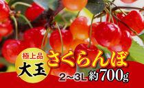 【令和3年 先行予約】極上品大玉・さくらんぼ(2段並べ2~3L約700g)