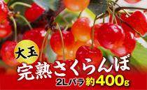 【令和3年 先行予約】完熟大玉・さくらんぼ(2Lバラ約400g)