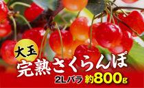 【令和3年 先行予約】完熟大玉・さくらんぼ(2Lバラ約800g)