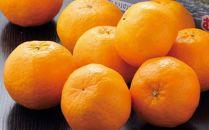 RK059【訳あり】人気の柑橘室戸産ポンカン3kg