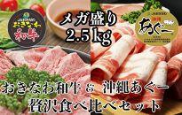 沖縄あぐー&おきなわ和牛の贅沢食べ比べセット(2.5kg)