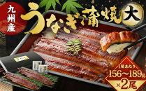 FY01-11九州産うなぎ蒲焼大2尾(1尾あたり156~189g)