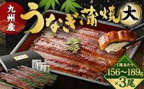 FY11-15九州産うなぎ蒲焼大3尾(1尾あたり156~189g)