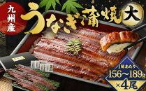 FY12-19九州産うなぎ蒲焼大4尾(1尾あたり156~189g)