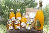 【数量限定】和歌山県産 大ちゃんの畑農園のギフトセット【濃厚みかんジュースと手作り4種マーマーレード】バラエティーセット