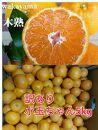 【自宅用】大ちゃんの畑農園木成り完熟有田みかん5kg(小玉ちゃん)
