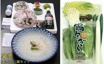 FI26-73豪華とらふぐ三昧セット※野菜付(刺身・鍋4~5人前)