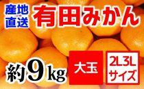 【産地直送】有田みかん約9kg(大玉:2L~3L)紀州グルメ市場【数量限定】