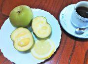 希少!あま~い南国のリンゴ【ホワイトサポテ】1kg(3~6個)