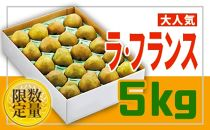 BP019 ♪フルーツ王国山形♪ラフランス5kg