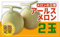 BP024 ♪フルーツ王国山形♪メロン【秀品2玉】