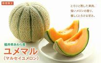 特別栽培農産物マルセイユメロン「ユメマル」(5㎏)
