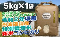 新米!抜群の味と香り 特別栽培米 丹波篠山産コシヒカリ5kg×1