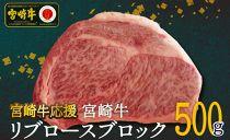 【期間限定】宮崎牛リブロースブロック500g