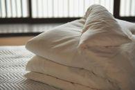 【大洲産国産繭100%使用】近江真綿布団正絹富士絹  無地白色キング