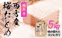 栃木市西方産桜おとめ5kg