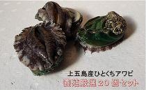 【活】上五島産ひとくちアワビ養殖厳選20個セット
