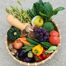 【ポイント交換専用】地場産旬の果物と野菜の詰め合わせ