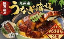 FY19-10鰻天屋の九州産うなぎ蒲焼約140g×2尾セット