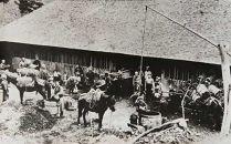 南部鉄器 40年のロングセラー洋風煮込み鍋 伝統工芸品