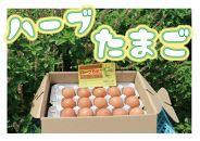 宮古島産自然卵【ハーブたまご】(30個)