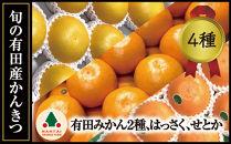 限定数20旬の有田産かんきつ味わいセット(全4回お届け)【南泰園】