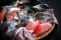 銚子漁港海風天日干し干物(骨取り)21切