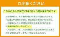 博多あまおう270g×4パック【2021年02月発送開始】