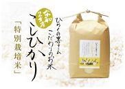 【頒布会】白米5kg(全12ヵ月)南魚沼産コシヒカリ ひらくの里ファーム