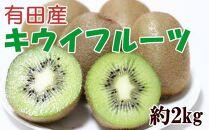 有田でとれた完熟キウイフルーツ約2kg(M~3Lサイズ混合)