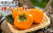 【2021年9月中旬以降発送】【秋の味覚】和歌山産の平たねなし柿約7.5kg(サイズおまかせ)・秀品
