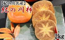 【2021年10月中旬以降発送】【名産】紀の川柿約2kg(種なし・黒あま柿)・秀品