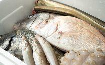 【魚千代】魚介類詰め合わせ