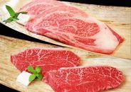 【冷蔵便】ステーキセット計1.6kg(ロース&柔らか赤身200g各4枚)