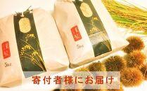 ◆【お米シェア】令和2年(2020)産農家直送近江米コシヒカリ5kg×2袋精米済