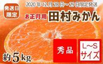 【12月28~29日発送】(お正月用)田村みかん 約5kg(S~Lサイズ)