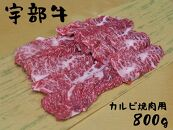 【宇部牛】カルビ焼肉用800g