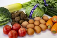 【12か月定期便】東京・八王子産 産直朝どれ新鮮野菜&卵の詰め合わせ