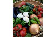 前川農園の季節のお野菜、米、加工品、お楽しみセット