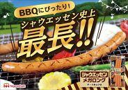 【日本ハム】シャウエッセン メガロング 210gx10パック