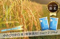 【減農薬で体に気を使った】令和2年産 ゆめぴりか白米5kg×2