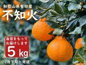 【先行予約】山城農園の旨味が詰まった有田の不知火5kg/ORYYお薦め!