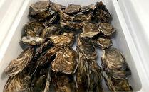 生牡蠣大~特大サイズ約2.8kg(20~25個入)