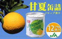 甘味と苦味のバランスが特徴甘夏缶詰(全果粒、身割れ混合)12缶入
