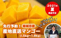 先行予約!2021年発送産地直送マンゴー1.5kg~1.8kg