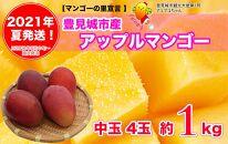 【2021年夏発送】豊見城完熟アップルマンゴー(中玉4玉)